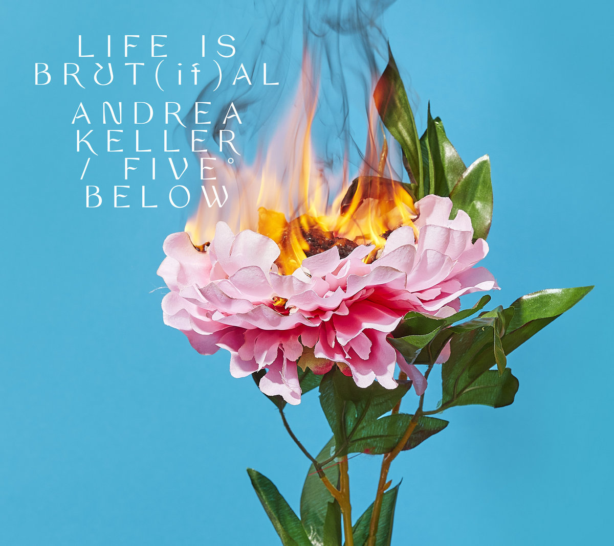 Andrea Keller on Five Below release 'Life is Brut[if]al'